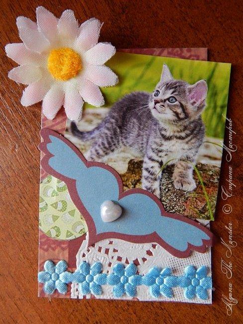 """Приветствую всех жителей Страны Мастеров! Представляю новую серию карточек """"Котята"""". фото 2"""