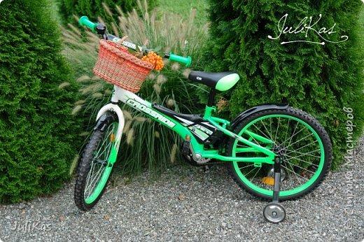 """Доброй ночи, коллеги!  Решилась я на эксперимент - велокорзинки детские... давно меня восхищали плетеные велокорзины, решила начать с детских, к тому же их можно сделать яркими, дети это любят, а я как люблю баловаться цветом.... вот и оттянулась )))) """"Корзинка лесной феи"""" размер 26х17 см, h 15 см фото 2"""
