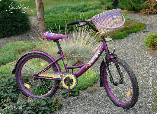 """Доброй ночи, коллеги!  Решилась я на эксперимент - велокорзинки детские... давно меня восхищали плетеные велокорзины, решила начать с детских, к тому же их можно сделать яркими, дети это любят, а я как люблю баловаться цветом.... вот и оттянулась )))) """"Корзинка лесной феи"""" размер 26х17 см, h 15 см фото 14"""