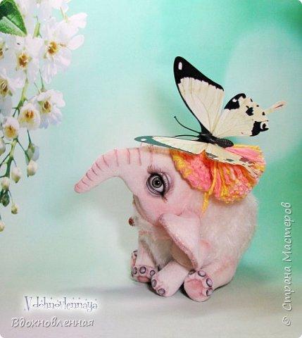 Я очень люблю слоников! Вдохновляюсь я фотографиями слонят в живой природе, сохраняю фото в папочку, а когда проссматриваю - улыбка сама расплывается по лицу и хочется потянуться рукой и дотронуться, и никому не дать в обиду.. Вот в таких эмоциях, и родился у меня слоненок Прошенька. Нежный, почти ванильный, беленький, с розовыми щечками)) Ну прям такой, о котором и мечатала! Проша так мило играл с залетевшими к нам бабочками! Ему было так интересно! Настоящий ребенок, который хочет познавать этот яркий и многоликий мир! И как хочется, что бы на его пути, как и на пути каждого ребенка, было добро и любовь...  У Прошеньки подвижная голова и ножки. Тельце сшито из мохера, а части тела с коротким ворсом - из миништофа. Ноготки на ножках и веки сделаны из натуральной кожи. Хвостик на проволочном каркасе. Люблю этого солнечного ребенка! фото 2