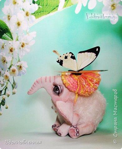 Я очень люблю слоников! Вдохновляюсь я фотографиями слонят в живой природе, сохраняю фото в папочку, а когда проссматриваю - улыбка сама расплывается по лицу и хочется потянуться рукой и дотронуться, и никому не дать в обиду.. Вот в таких эмоциях, и родился у меня слоненок Прошенька. Нежный, почти ванильный, беленький, с розовыми щечками)) Ну прям такой, о котором и мечатала! Проша так мило играл с залетевшими к нам бабочками! Ему было так интересно! Настоящий ребенок, который хочет познавать этот яркий и многоликий мир! И как хочется, что бы на его пути, как и на пути каждого ребенка, было добро и любовь...  У Прошеньки подвижная голова и ножки. Тельце сшито из мохера, а части тела с коротким ворсом - из миништофа. Ноготки на ножках и веки сделаны из натуральной кожи. Хвостик на проволочном каркасе. Люблю этого солнечного ребенка! фото 13