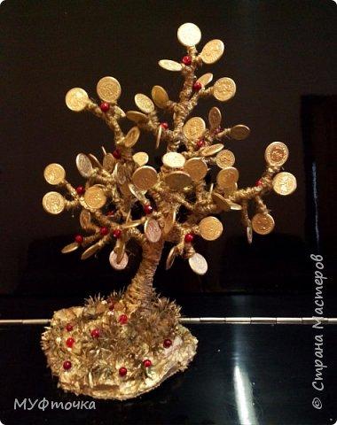 Денежное дерево) фото 1