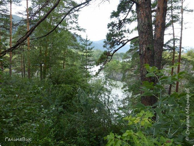 29 июля мы совершили поход к Камышлинскому водопаду, расположенному на реке Камышла, являющейся левым притоком Катуни. Этот водопад - памятник природы Республики Алтай с 1996 года. фото 14