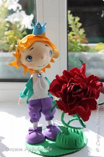 Маленький принц и его капризная роза!!!! Лицо нарисовано по мастер классу: Роспись мордочки, глаза и тд. http://stranamasterov.ru/node/699302 фото 2