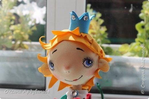 Маленький принц и его капризная роза!!!! Лицо нарисовано по мастер классу: Роспись мордочки, глаза и тд. http://stranamasterov.ru/node/699302 фото 5