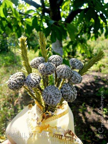 Здравствуйте всем заглянувшим. Лепила необычное растение, которое добавляют в букеты-брунию. Решила показать сам процесс, мини МК что ли. Я в первый раз, так что спрашивайте, что не ясно))) фото 2