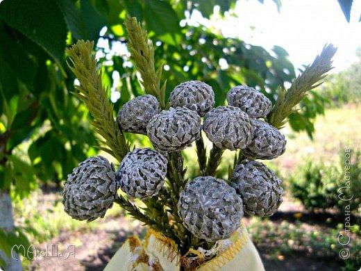 Здравствуйте всем заглянувшим. Лепила необычное растение, которое добавляют в букеты-брунию. Решила показать сам процесс, мини МК что ли. Я в первый раз, так что спрашивайте, что не ясно))) фото 3
