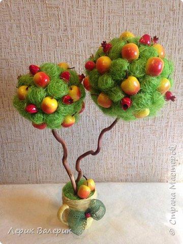 Вдохновившись яблочным спасом, садовыми, ароматными яблочками, я решила сделать фруктовый топиарий с двумя кронами.    фото 1