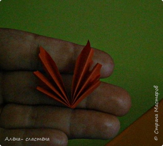 Осеннее дерево фото 7