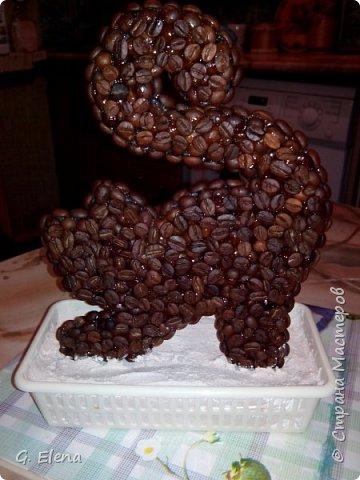 Очень давно хотела сделать котенка из кофе!и вот наконец воплотила это в жизнь! Может кого-то это тоже вдохновит!) фото 3