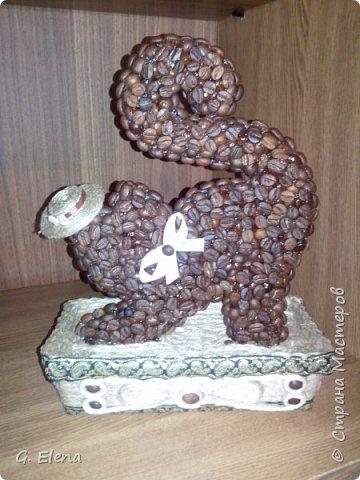 Очень давно хотела сделать котенка из кофе!и вот наконец воплотила это в жизнь! Может кого-то это тоже вдохновит!) фото 4