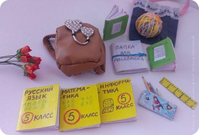 """Здравствуйте Все.  Сегодня я сдаю работу на конкурс  """" Школьные деньки""""     http://stranamasterov.ru/node/1042660   Её представляет Алиса она переходит в этом году в 5 класс.  фото 12"""