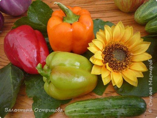 Добрый  день  или  вечер , дорогие  мастера  и  мастерицы  нашей  прекрасной  СМ  !!  И , как  продолжение  летних  даров  , хочу  показать  наши  овощи, фрукты  и  другие  плоды , которые  нам  подарило  это  лето .  Вверху  снимка  -  круглые , не  совсем  обычные , баклажаны .   Внизу  снимка -  некоторые  сорта  томатов . фото 2