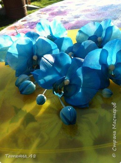 Здравствуй Страна Мастеров и Мастериц!!!!! Давненько я сюда не захаживала..... Вот опять у меня  орхидея созрела.... и опять голубая!  Спросом пользуется. Дарю .... Лепила на даче, т к живу там  с внуком вожусь... Вечернее время в моем распоряжении, поэтому извиняйте за качество фото.... фото 10