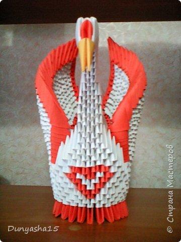 Вот такой лебедь получился!) Этот с оранжевой окантовкой и с сердечком на грудке)) фото 1