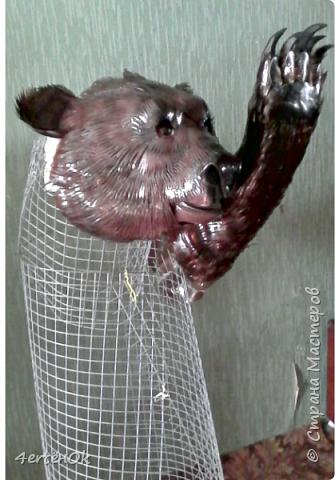 Медведь фото 11