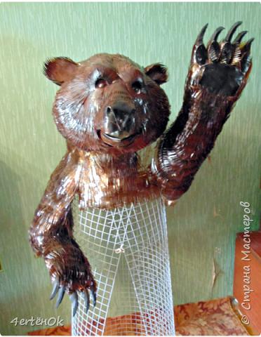 Медведь фото 13