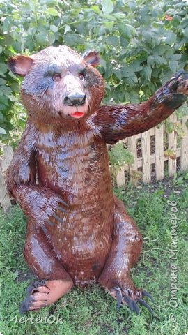 Медведь фото 4
