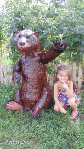 Медведь фото 3