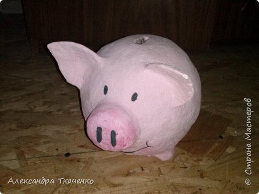 Моя милая и любимая свинюшечка))) фото 1