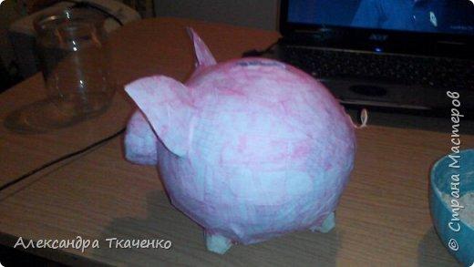 Моя милая и любимая свинюшечка))) фото 3