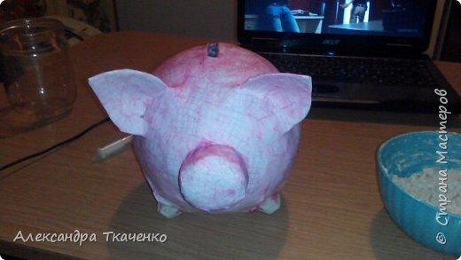 Моя милая и любимая свинюшечка))) фото 2