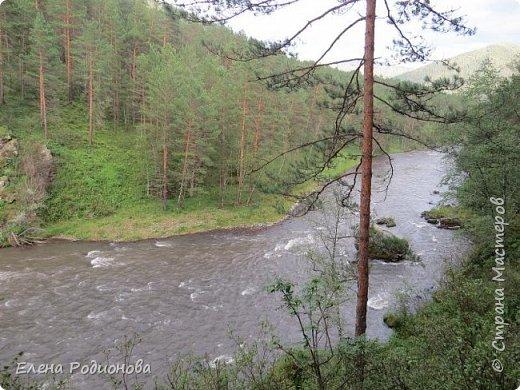 """Эту сказочную картину можно увидеть на горе Синюха в республике Алтай. А побывали мы здесь благодаря проведённой в Горном Алтае выставке """"Живая планета"""". фото 10"""