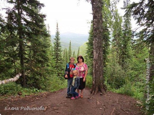 """Эту сказочную картину можно увидеть на горе Синюха в республике Алтай. А побывали мы здесь благодаря проведённой в Горном Алтае выставке """"Живая планета"""". фото 1"""