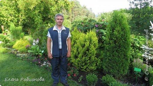 """Эту сказочную картину можно увидеть на горе Синюха в республике Алтай. А побывали мы здесь благодаря проведённой в Горном Алтае выставке """"Живая планета"""". фото 5"""