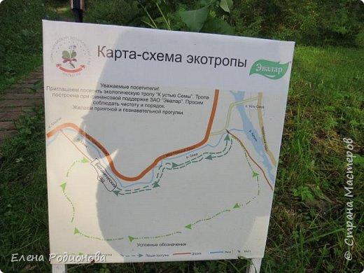 """Эту сказочную картину можно увидеть на горе Синюха в республике Алтай. А побывали мы здесь благодаря проведённой в Горном Алтае выставке """"Живая планета"""". фото 9"""