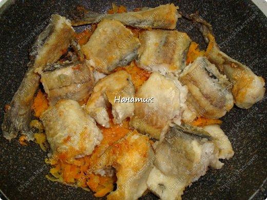 Предлагаю вашему вниманию рецепт из рыбки: -5 средних луковиц -морковь среднего размера 5шт -минтай 3шт -мука для панировки рыбы -растит.масло для обжарки -соль по вкусу -чеснок 2 зубчика -томат (у меня домашний) 700мл -зелень петрушки 30г фото 6