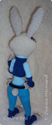 Моя Джуди Хоппс из Зверополиса фото 2