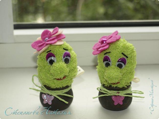 Доброго дня! Вот такие двойняшки у меня родились сегодня. Офисные позитивчики, вечноцветущие кактусятки! Поливать исключительно радостью, а удобрять любовью!!! Чистый воздух и тепло в душе гарантируем! фото 1
