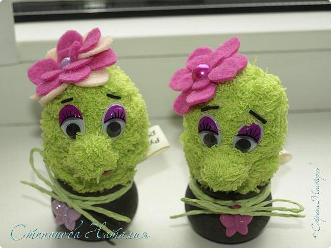 Доброго дня! Вот такие двойняшки у меня родились сегодня. Офисные позитивчики, вечноцветущие кактусятки! Поливать исключительно радостью, а удобрять любовью!!! Чистый воздух и тепло в душе гарантируем! фото 5