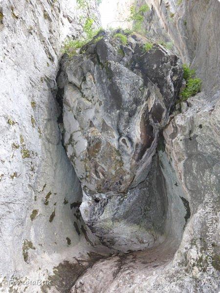 Итак, следуя по Чемальскому тракту, в ходе обзорной экскурсии был предложен для просмотра очень интересный (загадочный!!!) горный объект - огромный валун, застрявший в ущелье. И зовется этот камень Баатыр-Таш, что в переводе означает Богатырь-камень. фото 3