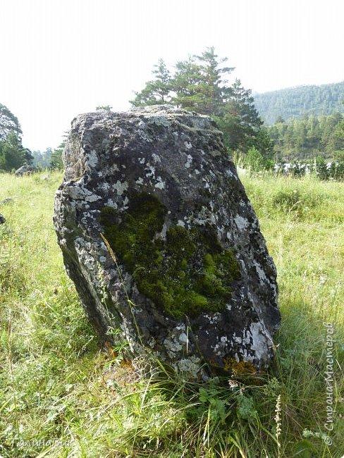 Итак, следуя по Чемальскому тракту, в ходе обзорной экскурсии был предложен для просмотра очень интересный (загадочный!!!) горный объект - огромный валун, застрявший в ущелье. И зовется этот камень Баатыр-Таш, что в переводе означает Богатырь-камень. фото 14