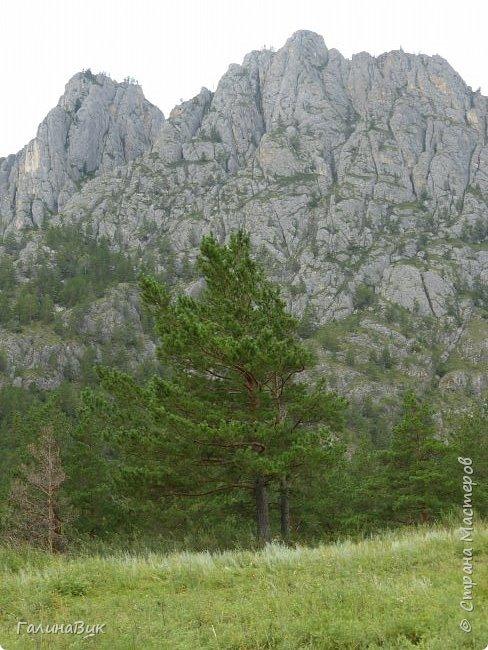 Итак, следуя по Чемальскому тракту, в ходе обзорной экскурсии был предложен для просмотра очень интересный (загадочный!!!) горный объект - огромный валун, застрявший в ущелье. И зовется этот камень Баатыр-Таш, что в переводе означает Богатырь-камень. фото 27