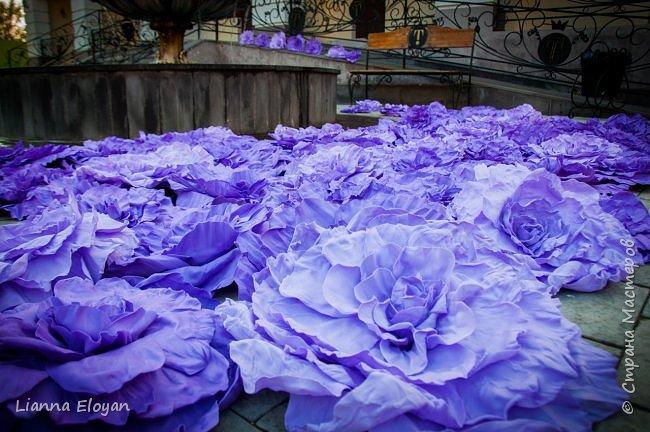 Цветы  с диаметром 45см 120штук  для фотопроекта Анастасии Панеевой  https://vk.com/paneeva фото 2