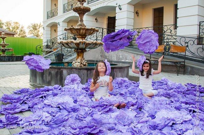 Цветы  с диаметром 45см 120штук  для фотопроекта Анастасии Панеевой  https://vk.com/paneeva фото 4