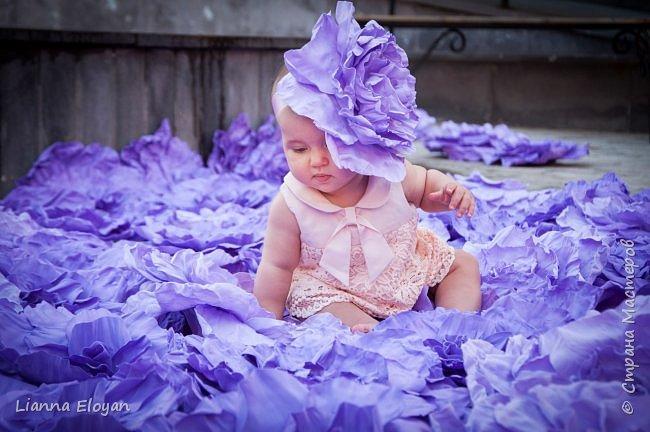 Цветы  с диаметром 45см 120штук  для фотопроекта Анастасии Панеевой  https://vk.com/paneeva фото 5