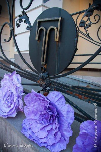 Цветы  с диаметром 45см 120штук  для фотопроекта Анастасии Панеевой  https://vk.com/paneeva фото 6