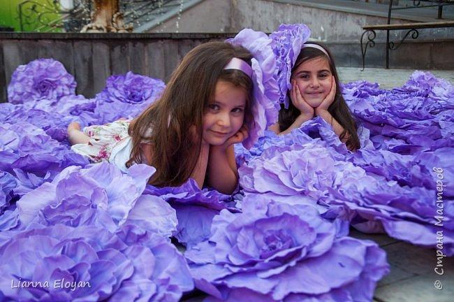 Цветы  с диаметром 45см 120штук  для фотопроекта Анастасии Панеевой  https://vk.com/paneeva фото 8