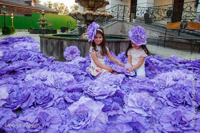 Цветы  с диаметром 45см 120штук  для фотопроекта Анастасии Панеевой  https://vk.com/paneeva фото 9