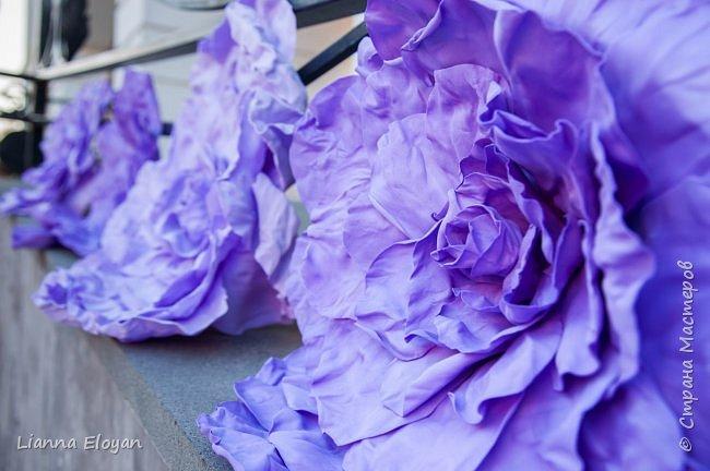 Цветы  с диаметром 45см 120штук  для фотопроекта Анастасии Панеевой  https://vk.com/paneeva фото 10