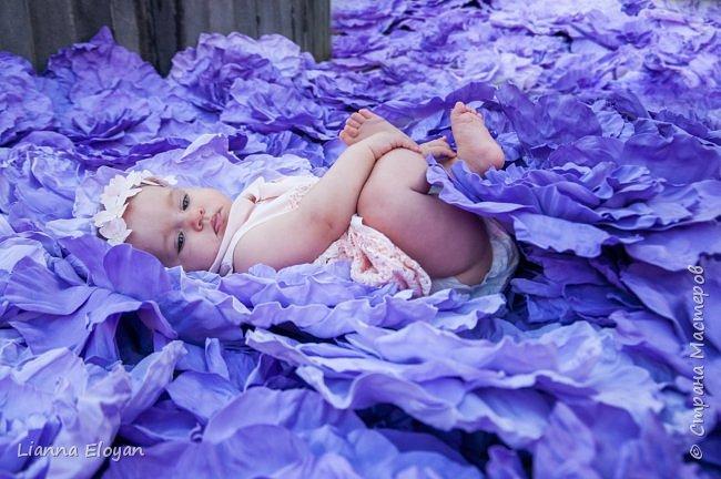 Цветы  с диаметром 45см 120штук  для фотопроекта Анастасии Панеевой  https://vk.com/paneeva фото 11