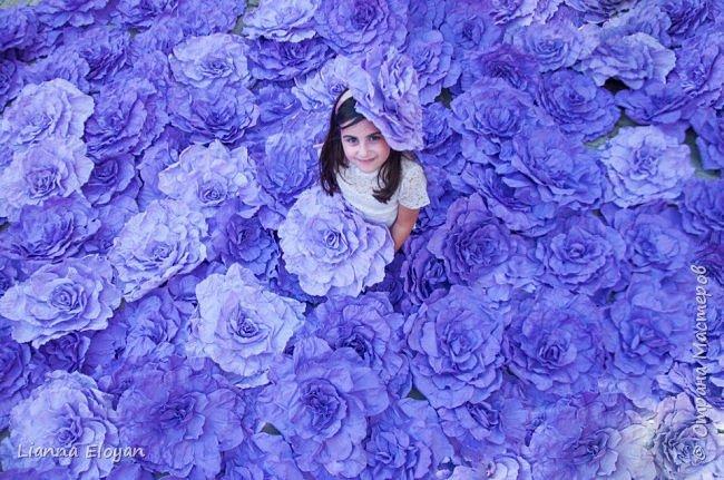 Цветы  с диаметром 45см 120штук  для фотопроекта Анастасии Панеевой  https://vk.com/paneeva фото 1