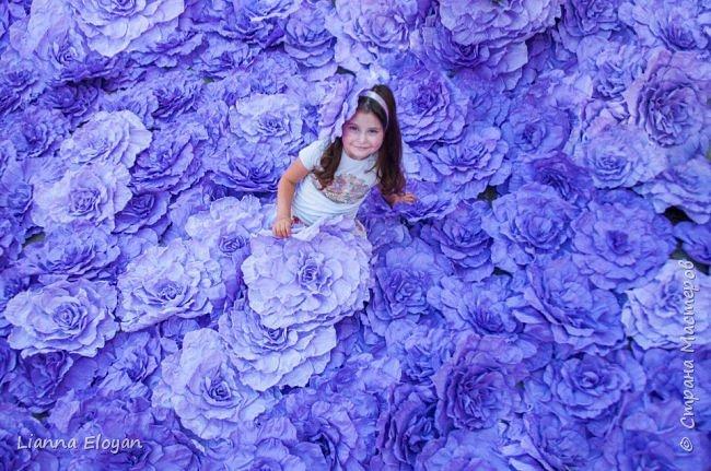 Цветы  с диаметром 45см 120штук  для фотопроекта Анастасии Панеевой  https://vk.com/paneeva фото 12