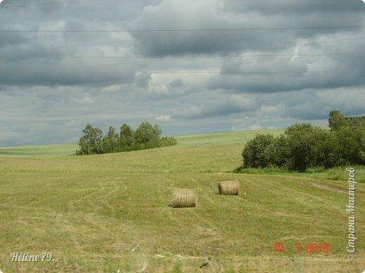 Моя деревня пахнет многим, многим, Все запахи ее не посчитать. Когда я уставал с большой дороги, Деревнею хотелось подышать. ... Вот летний зной душистой пахнет мятой, и запах чабреца идёт с полей.  (П. Черных)  фото 31