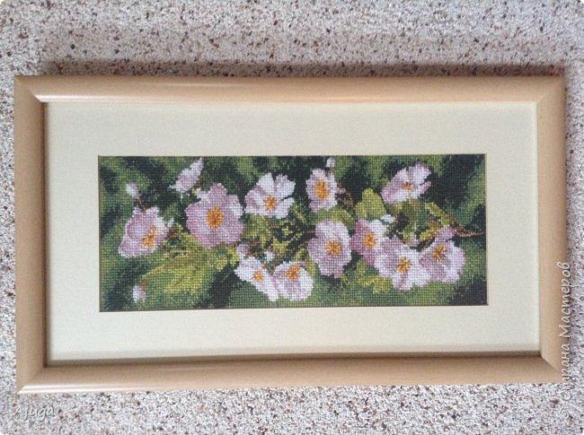 Сегодня покажу картины с цветочными мотивами.Первая- подсолнухи.К сожалению фото загружаются ,, лёжа,,, а у меня они висят вертикально. фото 2