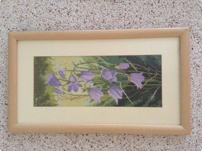 Сегодня покажу картины с цветочными мотивами.Первая- подсолнухи.К сожалению фото загружаются ,, лёжа,,, а у меня они висят вертикально. фото 7